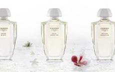 Eau de Parfum Creed