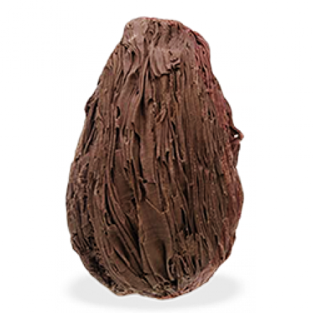 uovoforesta_1