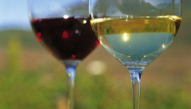 Tra Trentino e Sud Tirolo: un viaggio tra paesaggi stupendi e il buon vino